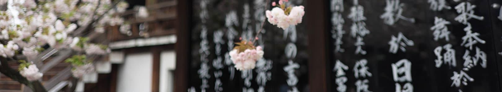 日文檢定技巧-文字語彙