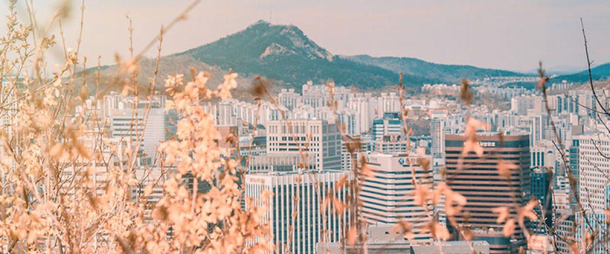 教你韓國自由行夠用的3大類韓語會話